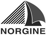 Norgine_Logo